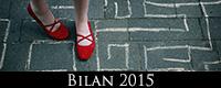 M_bilan_2015_icon