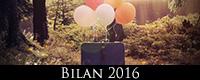 M_bilan_2016_icon