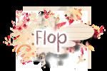 [M]_flop
