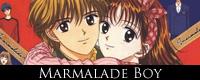 Marmalade-Boy