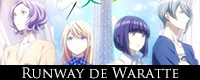 Runway_de_Waratte